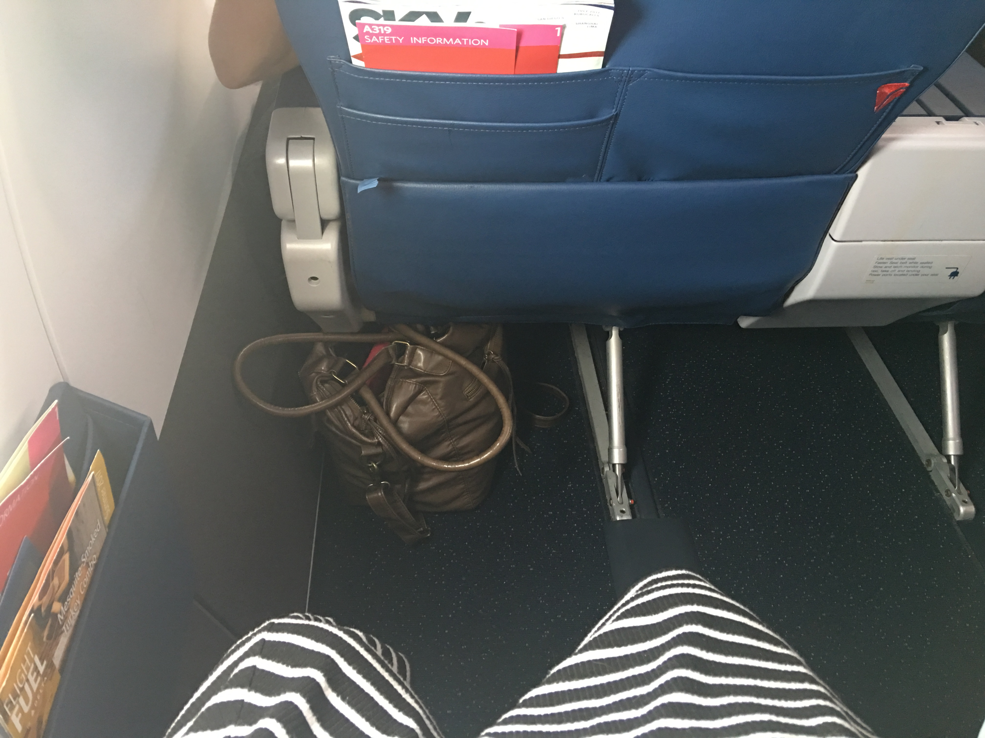 Delta Comfort+ Review – Page 333 – Halee with a Flair
